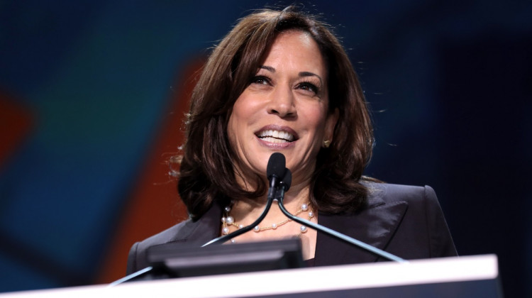 Will the Progressive Left Accept Kamala Harris?